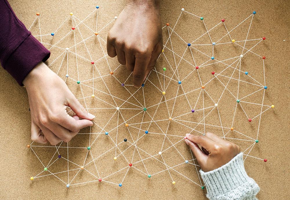 شبکه سبز